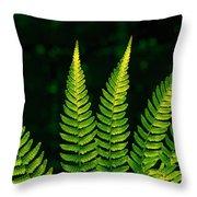 Fern Close-up Nature Patterns Throw Pillow