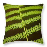 Fern Pattern Throw Pillow