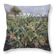 Field Of Banana Trees Throw Pillow