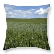 Field Of Wheat Throw Pillow