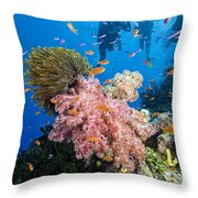 Fiji Underwater Throw Pillow