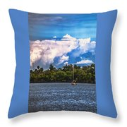 Finding Safe Harbor Throw Pillow