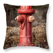 Fire Hydrant #16 Throw Pillow