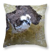 Fish Eagle Bird Playing In Water Throw Pillow