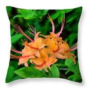 Flame Azalea Throw Pillow