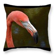 Flamingo Closeup Throw Pillow