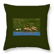 Flamingo Family Throw Pillow
