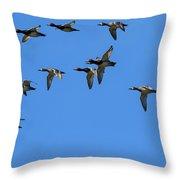 Flock Of Redhead Ducks In Flight Throw Pillow