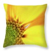 Floral Art Cxiii Throw Pillow
