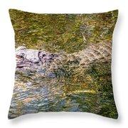 Florida Alligator Throw Pillow