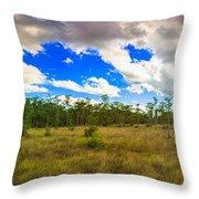 Florida Everglades Throw Pillow