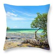 Florida Keys Mangrove Reef Throw Pillow