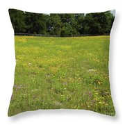 Florida - Wildflowers Throw Pillow