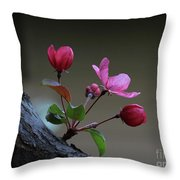 Flowering Crabapple Throw Pillow