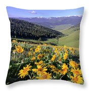 Spring In The Mountains Throw Pillow