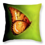 Flying Butterfly On Decorative Background, Graphic Design. Throw Pillow