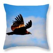 Flying Condor Throw Pillow