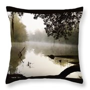 Fog And Light Throw Pillow