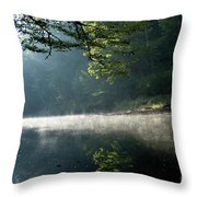 Fog And Reflection On Stream Throw Pillow