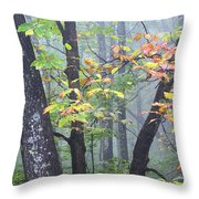 Foggy Fall Forest Throw Pillow