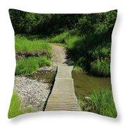 Footbridge Over A Creek Throw Pillow