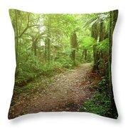 Forest Walking Trail 1 Throw Pillow