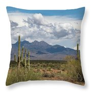 Four Peaks In May Throw Pillow