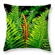 Fern Fractals In Nature Throw Pillow