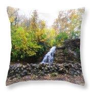 France Park Throw Pillow