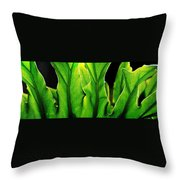 Fresh Green Leaves Throw Pillow