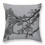 Fresh Snow On Magnolia Tree Throw Pillow