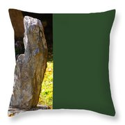 Crackers And Cheese For Two? Throw Pillow