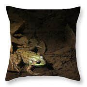 Frog 4 Throw Pillow