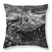 From Bog Spring Trail Throw Pillow