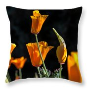 From Darkness Into The Light Throw Pillow