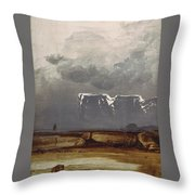 From North Cape Throw Pillow