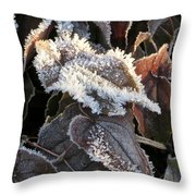 Frost-lined Throw Pillow