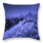 Frosty Field Throw Pillow