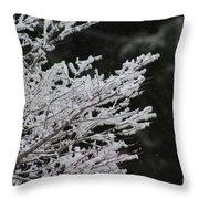 Frozen Branches Throw Pillow