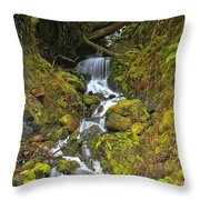 Streaming Through Rainforest Rubble Throw Pillow