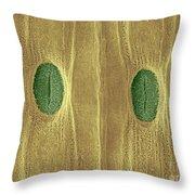 Garlic Leaf Stomata, Esem Throw Pillow