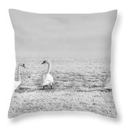 Geese Surrounded By Hoarfrost Throw Pillow