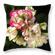 Geranium Flowers Throw Pillow
