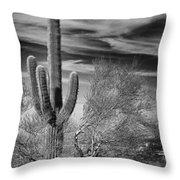 Giant Saguaro Throw Pillow