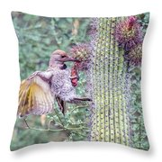 Gilded Flicker 4167 Throw Pillow