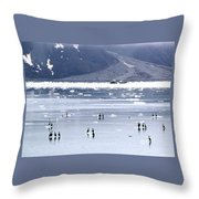 Glacier Bay Alaska Throw Pillow