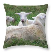 Goat Family Throw Pillow