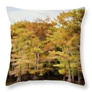 Golden Bayou Throw Pillow