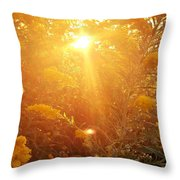 Golden Days Of Autumn Throw Pillow