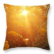 Golden Days Of Autumn Throw Pillow